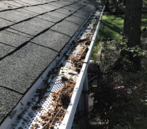 Clogged gutter roof leak