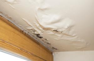 Sagging Ceiling Roof Leak