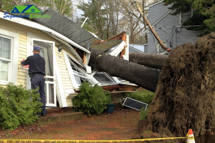 Roof Damage by Tree